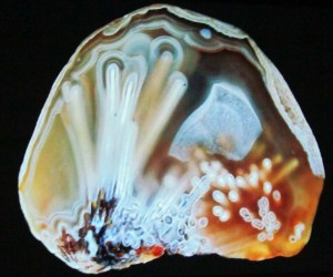 Lake Superior Agate - Tube - Photography by John D Marshall