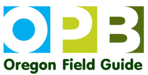 OPB-TV logo with Oregon Field Guide